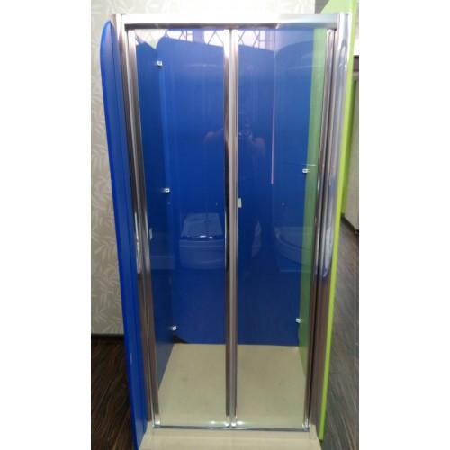 Душові двері ZDM-100-2 100х190